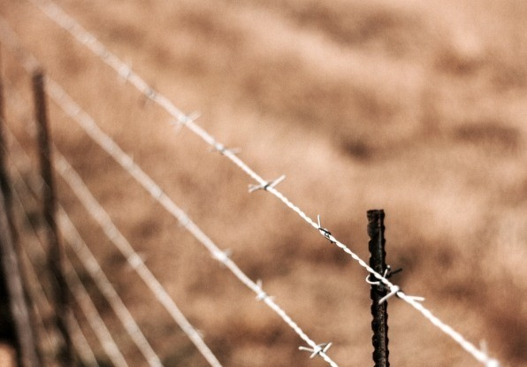 Image of a perimeter fence to protect from site intruders